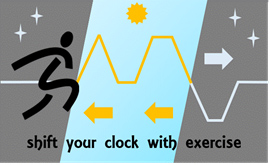 Manipulating clocks through exercise